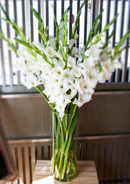 Flower arrangement. #glads #delicate follow #Labola.co.za for more fabulous flower trends.