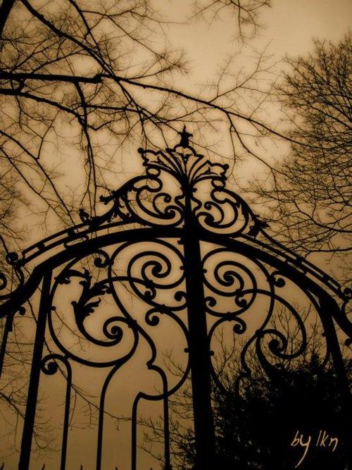 💚Fab gate: Doors, Creepy, Wrought Irons Gates, Art, Beautiful, Gardens Gates, Cemetery Gates, Gothic Gates, Halloween