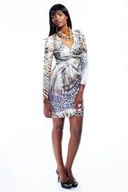 Rent this CLASS Roberto Cavalli dress from www.wantmewearme.co.za