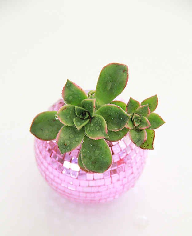 Plant a succulent in a DIY disco ball planter.