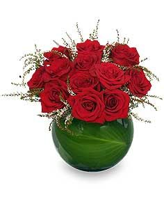 Want a Classic Gift for a Classy Girl? Check out this guide for sending roses!