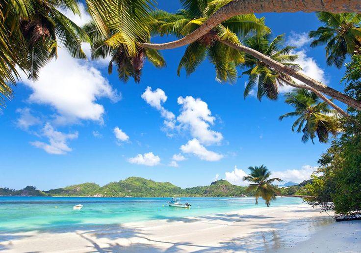 Mahé på Seychellerne har de smukkeste eventyrstrande, der nærmest ser ud som om, de er taget fra et postkort!