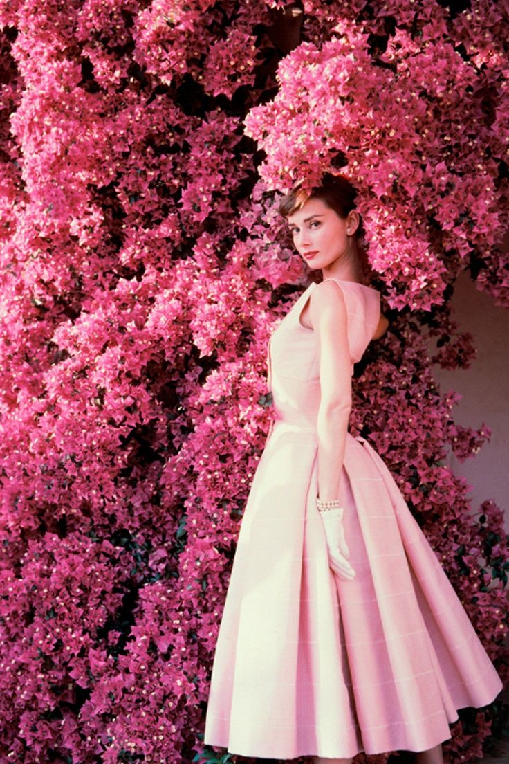 Audrey Hepburn and Bougainvillea