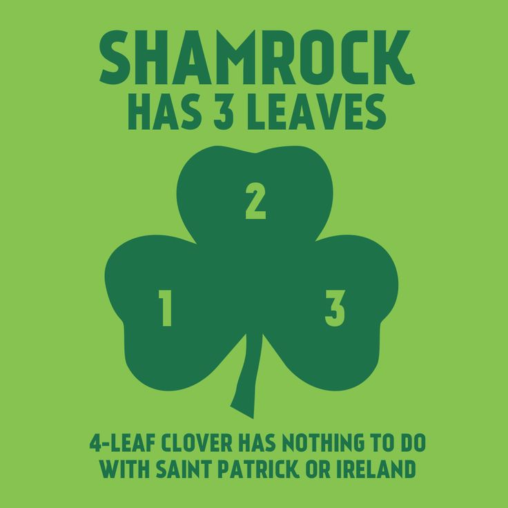 Shamrock has 3 leaves. 4-leaf clover has nothing to with Saint Patrick or Ireland. #stpatricksday