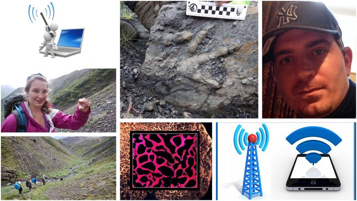 First dinosaur bones found in Denali National Park https://phys.org/news/2016-10-dinosaur-bones-denali-national.html 7 Discoveries by Amateurs & (Professionals) http://abcnews.go.com/Technology/Space/story?id=8221167&page=1