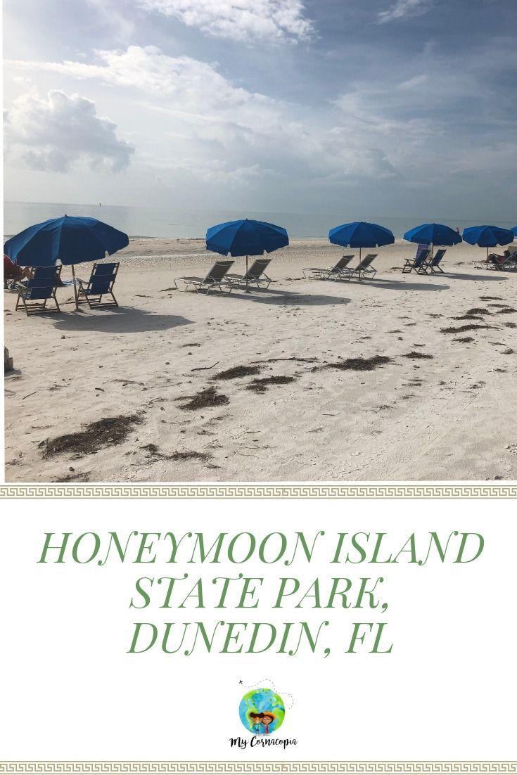 Visiting Honeymoon Island State Park My Cornacopia Honeymoon Island Florida State Parks Florida Vacation