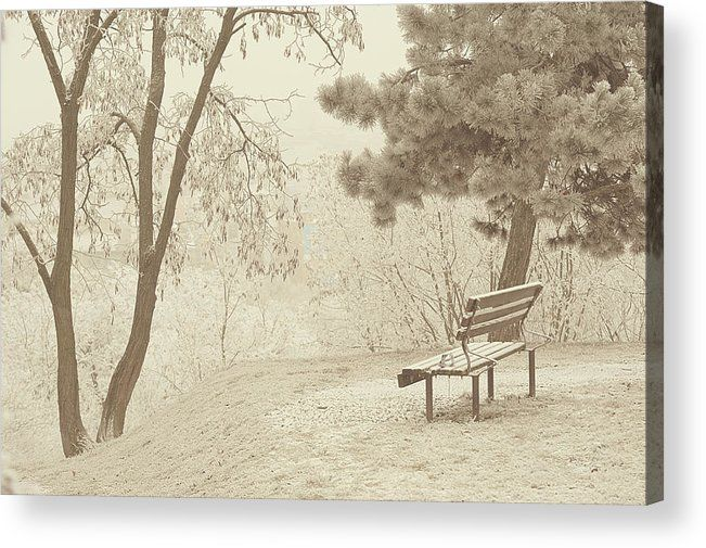 Jenny Rainbow Fine Art Photography Acrylic Print featuring the photograph Solitude. Gentle Winter by Jenny Rainbow