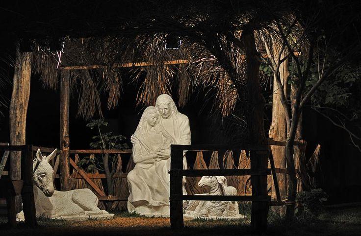 En Urdesa Norte, Guayaquil, Ecuador, la Iglesia de Jesucristo de los Santos de los Últimos Días (mormones)recrea el nacimiento de Jesús con figuras en tamaño real.