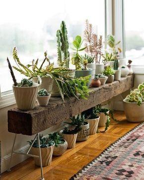 """486 curtidas, 2 comentários - Revista MinhaCasa (@revistaminhacasa) no Instagram: """"Um pedaço de madeira, muitos vasos perto da janela e pronto: um jardim que cabe em qualquer…"""""""