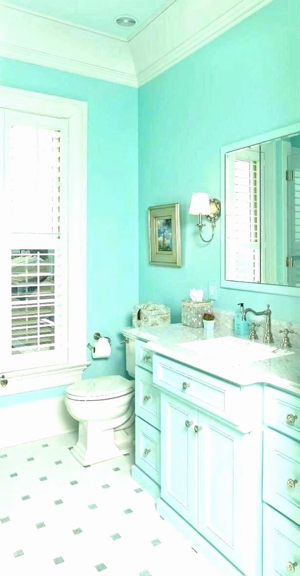 Aqua and Gray Bathroom Decor Luxury Teal Bathroom Decor ...