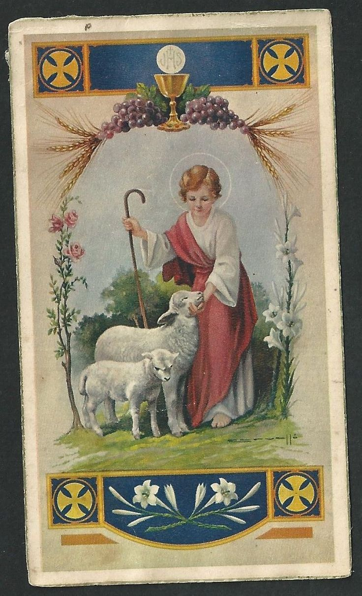 545 Best Images About Bioswales Stormwater On Pinterest: 545 Best Images About Jesus The Good Shepherd On Pinterest