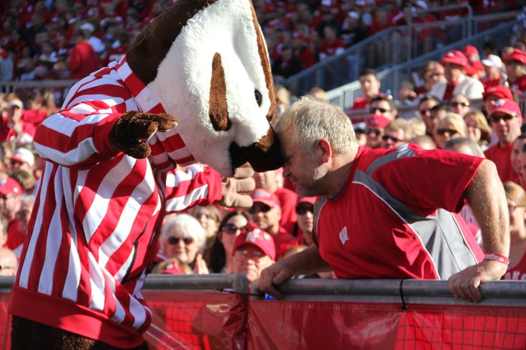 149 Best Wisconsin Badgers Images On Pinterest Wisconsin