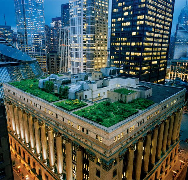 City Hall Rooftop Garden - The Most Beautiful Places in Chicago