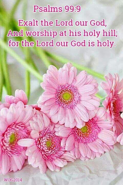 Psalm 99:9 KJV