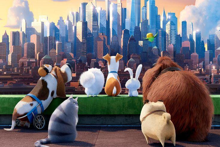 mascotas pelicula chloe - Buscar con Google