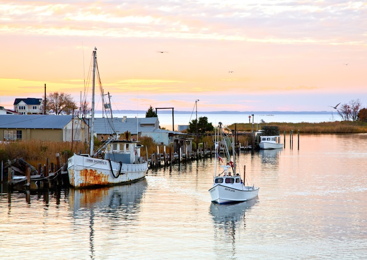 37 best images about maryland on pinterest for Fishing chesapeake bay