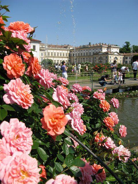 Roseto della Villa Reale - Monza, Lombardy, Italy