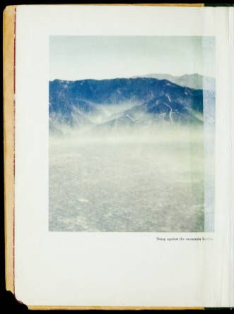 The smog problem in Los Angeles County: a report :: Rare Books and Manuscripts Collection