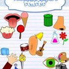 This set includes colored and line art graphics for:Sight (  4 objects for seeing)Taste (  4 objects for tasting)Touch (  4 objects for touchin...: Decor Clipart, Sen Clipart, Senses Clipart, Border Clipart, Clip Art, Art Graphics, Teacher Clipart, Science Graphics, Tpt Clipart