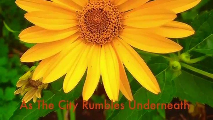 On and On - As The City Rumbles Underneath -