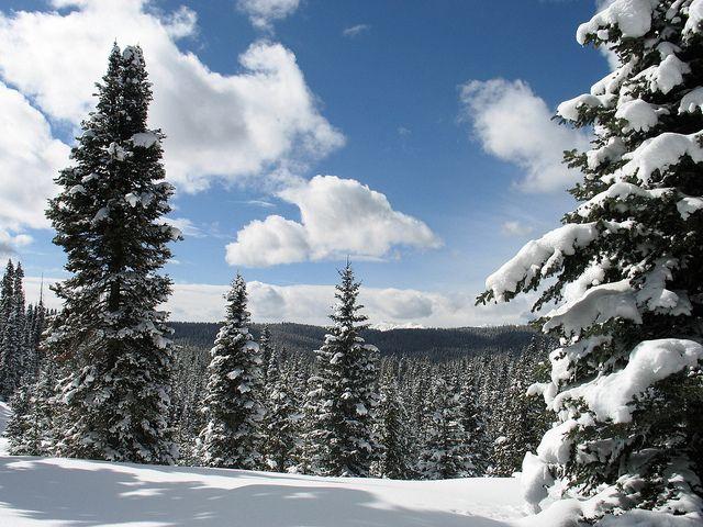 Snowshoeing in Durango Colorado