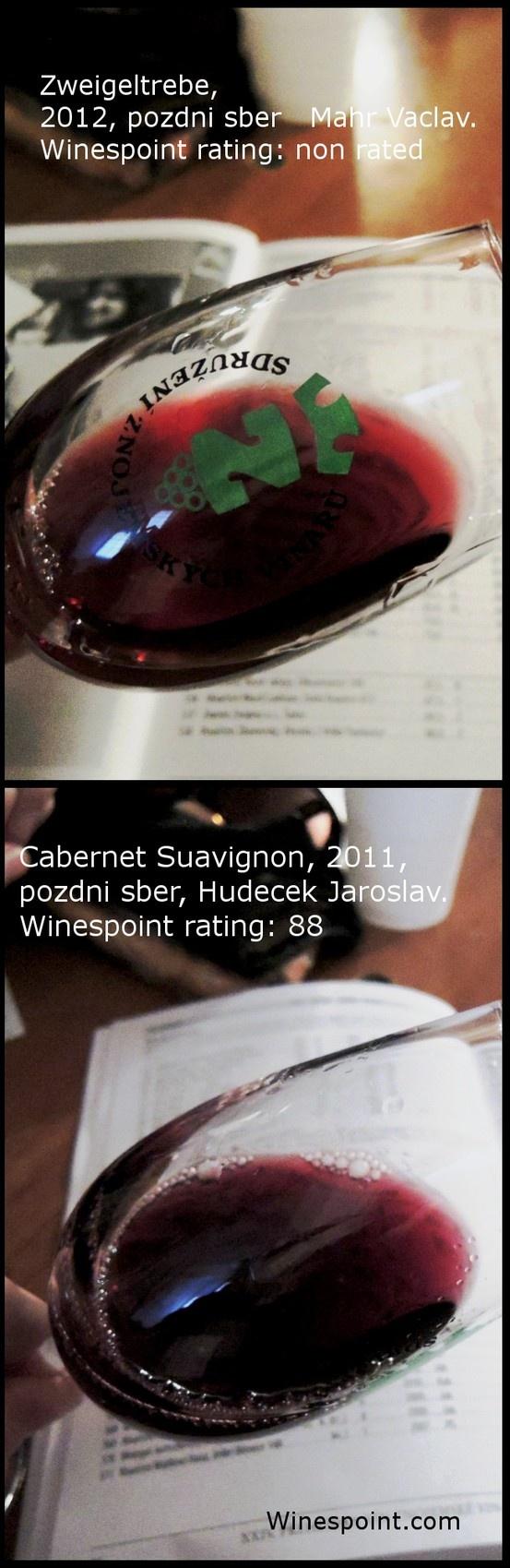Cabernet Sauvignon, 2011, pozdni sber, barrique, Hudecek Jaroslav, Znojmo, Czech Republic. Winespoint rating (03/2013): 88