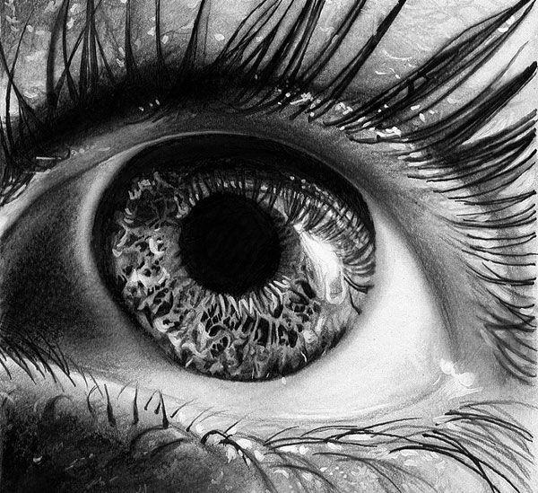 Eye-macro-Realistic-Pencil-Drawing.jpg (600×549)
