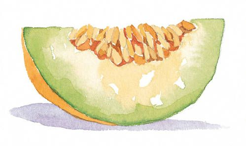 Eat Melons, Increase Your Life Expectancy