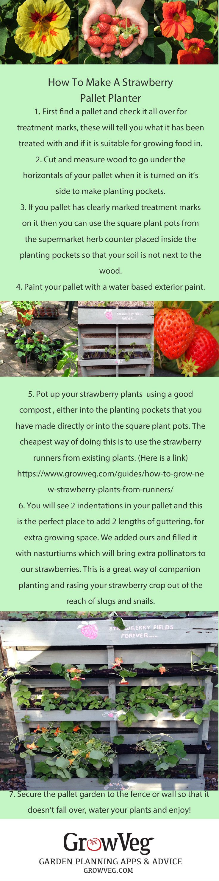 How to build a Strawberry planter, complete with a companion planted gutter garden out of an old pallet.....