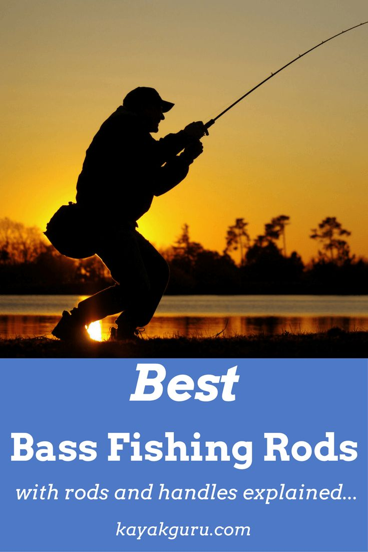 What are the best rods for bass fishing?
