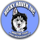 Husky Haven dog treat recipes - lots of them