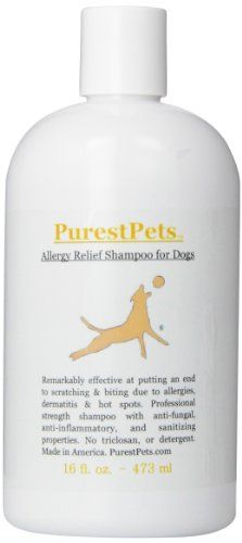 PurestPets Allergy Relief Medicated Dog Shampoo, 16-Ounce * Check this awesome product by going to the link at the image.