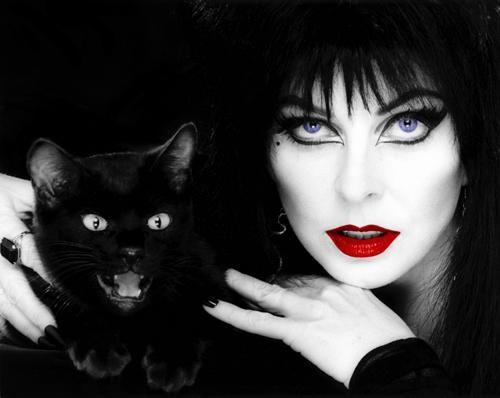 Elvira's Movie Macabre (TV series);  Elvira, Mistress of the Dark (1988);  Elvira's Haunted Hills (2001)  (Elvira and Friend, by patscozim:Thx Monika)