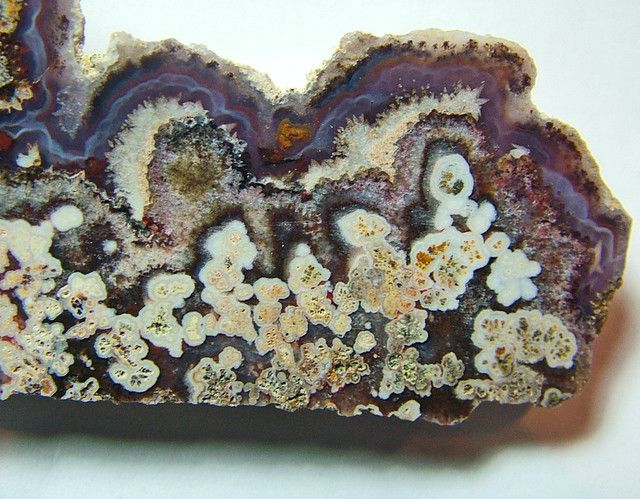 """make an offer"" Natural - Plume Agate Slab  natural 150.10 carats  AGATE DISPLAY GEMSTONE SPECIMEN GEMSTONE, FROM GEMROCKAUCTIONS.COM"