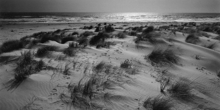 Windy #beach in #Maremma, #Tuscany, Italy  http://www.carlocarletti.com