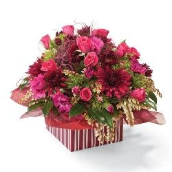 Congratulation flowers and gifts: Vintage