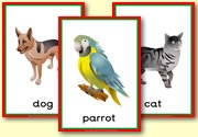 Pet Resources