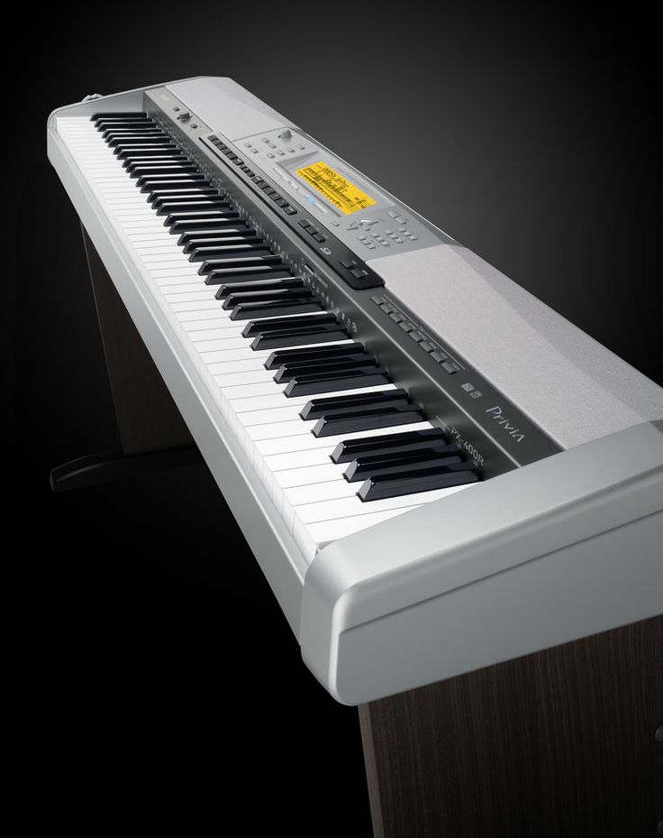 Wishlist: Casio Privia PX. Apartment sized. learn to play piano.