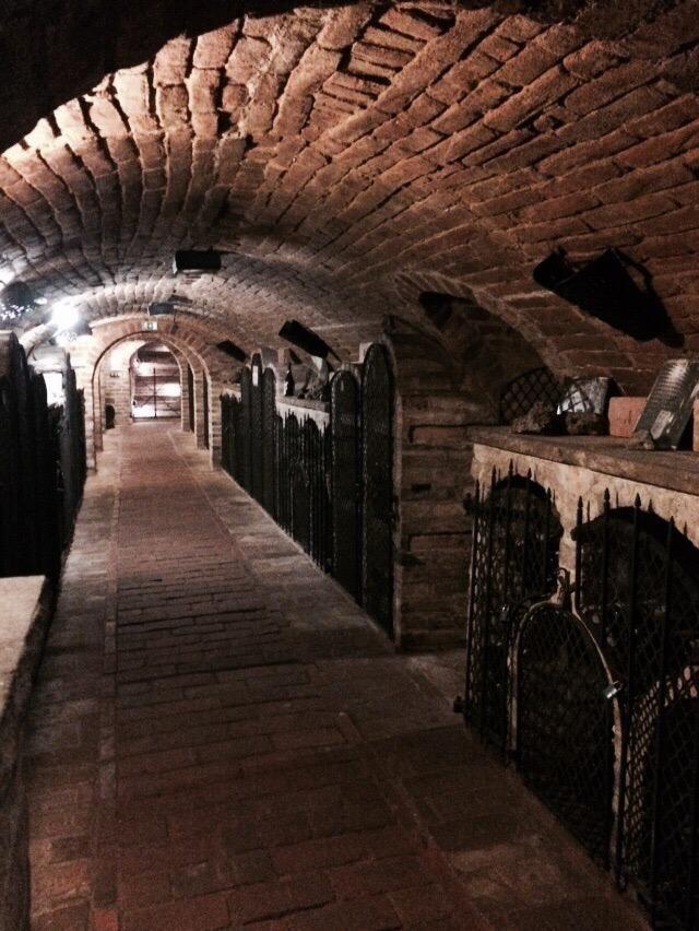 VALTICKE PODZEMI (wine cellar, tasting) - Valtice, Czech Republic