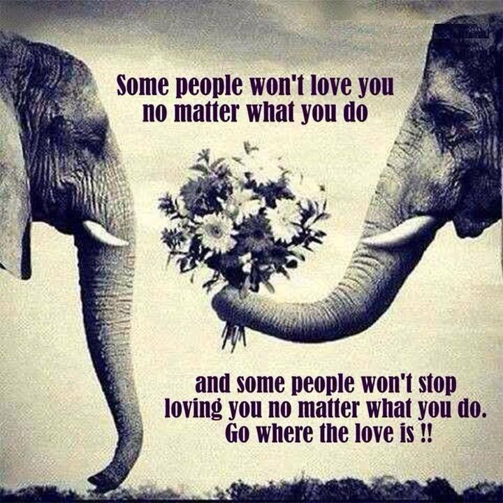 """""""Có những người không bao giờ yêu bạn cho dù bạn làm gì đi chăng nữa, và cũng có những người không ngừng yêu bạn cho dù bạn làm gì đi chăng nữa. Vậy thì, hãy đi về phía của tình yêu."""" (St)"""