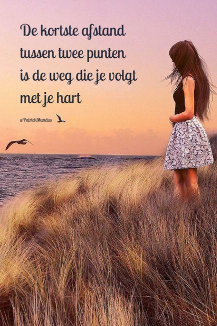 De kortste afstand tussen twee punten is de weg die je volgt met je hart...