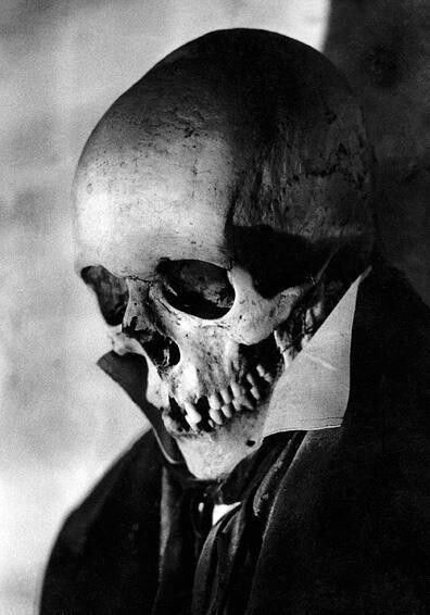 Skull with tux
