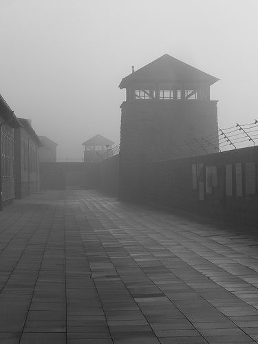 """""""Muro del pianto"""" - Campo di concentramento di Mauthausen-Gusen"""