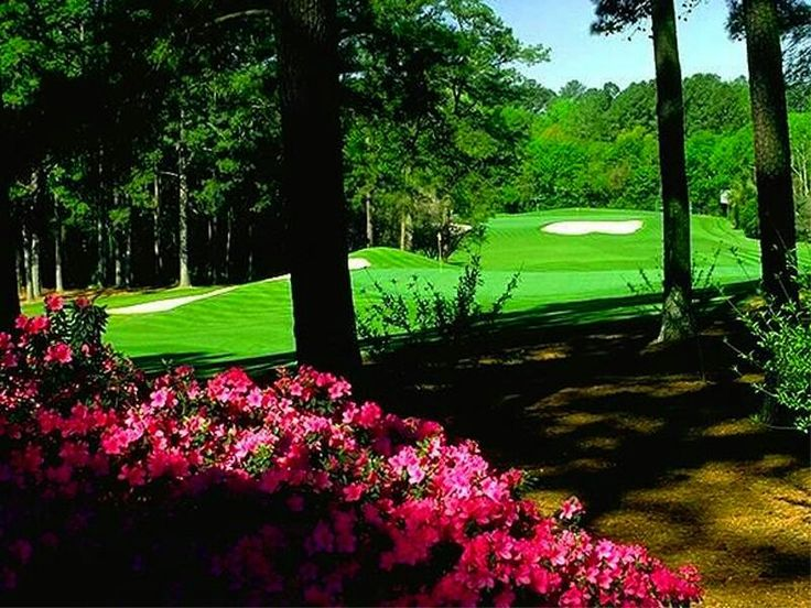 Augusta National Golf Course...one of the most pristine courses in the world.  They actually soften the fallen pine needles to soundproof walking.