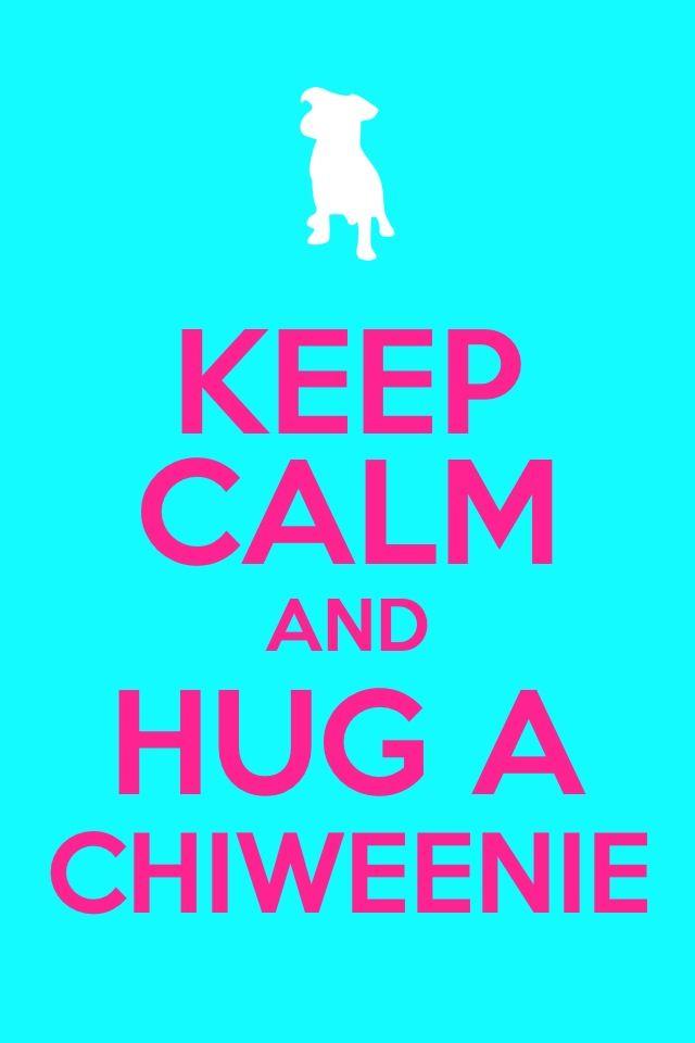 Hug a chiweenie! :)