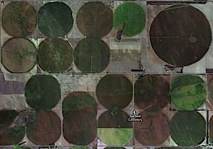 Squaring the Crop Circle?   Pivot irrigation is all about circles. Look at key crop producing regions of the USA on Google Maps and see the various green circles. But what about the corners? Can this land be used too? This post looks into alternatives plus asks about the trade-offs of not using the corners for agriculture.  Squaring the Circle, blog post on center pivot irrigationmissing corners. Can corners be used? http://agtoday.us/1eQwdUf