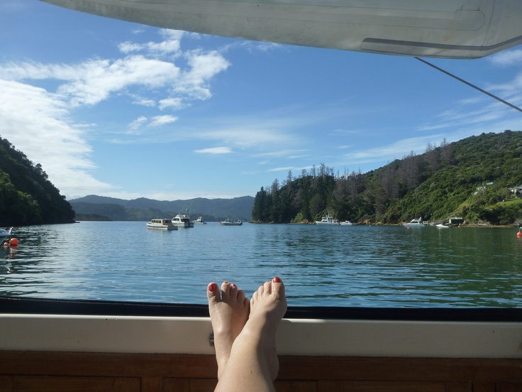 My feet enjoying the sun in the gorgeous Marlborough Sounds, South Island, NZ
