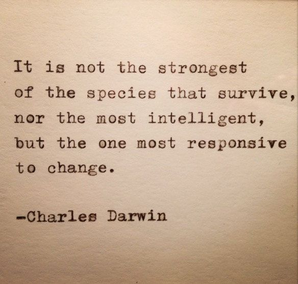 Charles Darwin Quote Typed on Typewriter by WhiteCellarDoor on Etsy https://www.etsy.com/listing/129486511/charles-darwin-quote-typed-on-typewriter