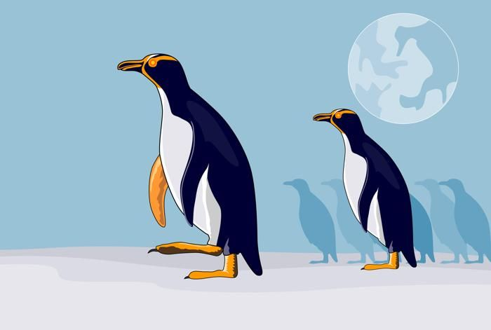 The Evolution of The Penguin  Looking back at the history of Google's Penguin algorithm and what the new 4.0 update, announced recently, means.   http://snip.ly/uyl5n
