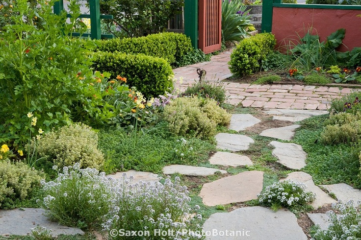 1000 images about gardening and yard inspiration on for Low growing plants for flower beds